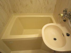 グリーンハイムリマⅡ バスルーム 洗面台はお風呂の中にあります